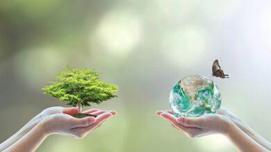 Cuidar el medio ambiente, tarea de todos