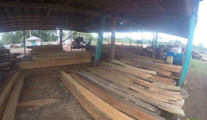 empresa agroforestal guanahacabibes