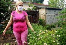 Augurar seguridad alimentaria ayuda a mejorar la convivencia familiar cubana